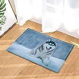 Decoración de animales, divertido perro fornido en alfombras de baño de nieve,alfombras de felpudo antideslizantes en el piso de entrada Puerta de entrada delantera, 15.7x23.6in,Accesorios de baño