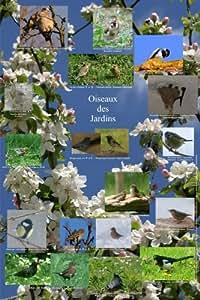 Poster Oiseaux des Jardins - Collection Posters Nature Animaux