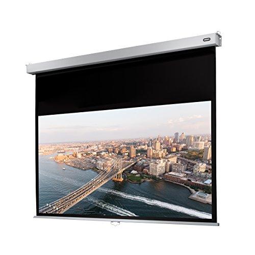 celexon Rollo-Leinwand Professional Plus | Format 16:9 | Nutzfläche 220 x 124 cm | Beamer-Leinwand geeignet für all Projektortypen | Full-HD und 3D-Leinwand | Einfache Installation & gute Planlage