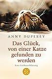 Das Glück, von einer Katze gefunden zu werden: Eine Liebeserklärung