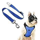 AFfeco Air Mesh Hunde Welpen Haustier-Geschirr mit Gürtelclip, Sicherheit, für Reisen, dunkelblau, M
