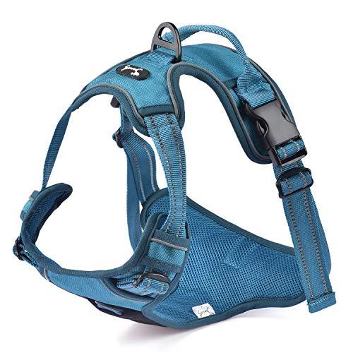 Louvra Pettorina Cane Imbracatura Durevole Regolabile Confortevole in Panno Oxford con Maniglia S-L-M-XL 52-65cm (Blu, M)