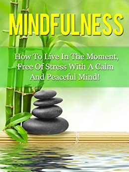 Mindfulness: How To Live In The Moment, Free Of Stress, With A Calm And Peaceful Mind (Mindfulness, Meditation) (English Edition) par [Stone, Diana]