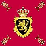 Drapeau Royal Standard of King Philippe of Belgium   0.06qm pour Diplomat-Flags Drapeau de Voiture