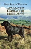 Advanced Labrador Breeding