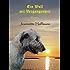 Ein Wolf mit Vergangenheit: Deneb lässt ermitteln