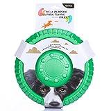 Frisbee Hunde by ZNOKA Hundespielzeug- Flying Disc EVA Schaum Material Floatable Tossing Spielzeug Hundeball für Welpen Kleine Mittlere & Große Hunde ø 22.5/ 26 cm Grün/ Blau/ Rot/ Lila (S, Grün)