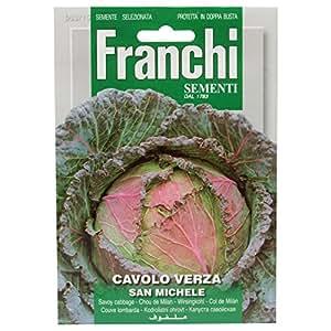 Franchi Sementi - Cavolo Verza San Michele