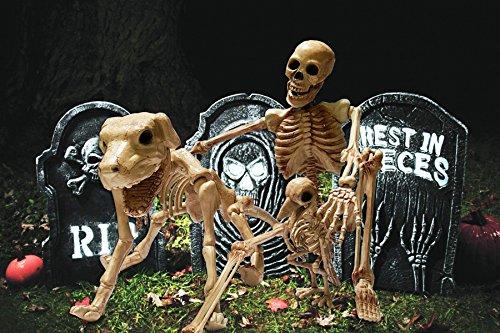 Cultica(R) Halloween Megaset Schädel Trauma Skelett Mensch Skelett Hund Skelett Rabe sowie 3 Blitzlicht Grabsteine