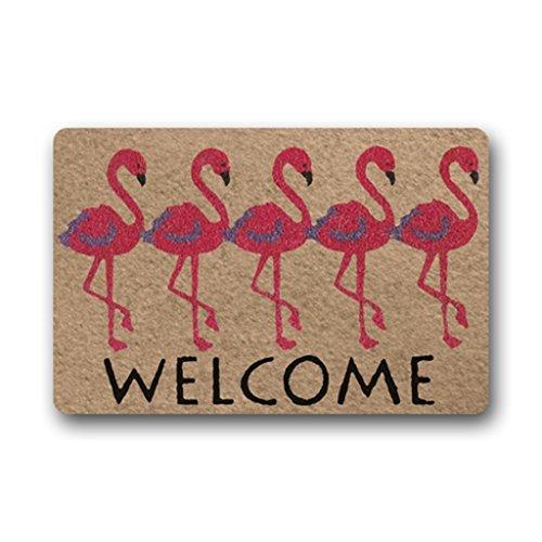 Matte Home Decor (Eureya Custom Fußmatte Welcome Flamingo Fußmatte Fußmatte in/Außen Gummi Matte Teppich Home Decor 40X 60cm)