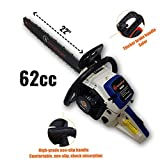 ToolsCentre Professional 62CC 2.5KW 22-inch Guide Bar and Chain Gasoline Chainsaw with 11
