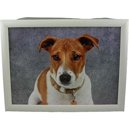 laptray grey jack russell 43x33x7cm [SP]