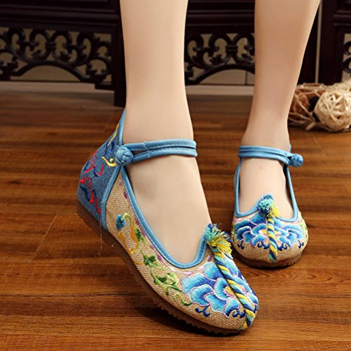 Zhhlinyuan Classical Embroidered Shoes Beautiful Womens Casual Cloth Shoes 3 Colors blue