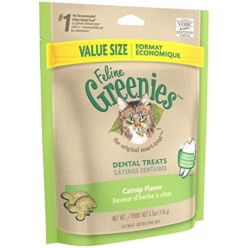 Greenies Dental Katze behandelt -