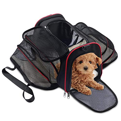 WOT I Hundebox Faltbar Transportbox Hund aus Oxford Gewebe Tragetasche für Hunde Katze Welpen Haustier Mit Schultergurt 44x27x7cm