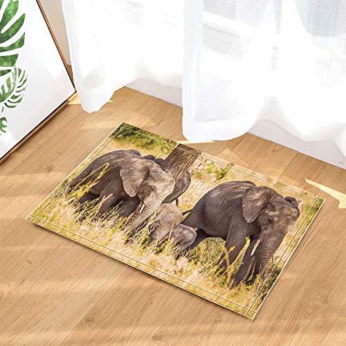 Decoración de animales salvajes Familia de elefantes Safari Caminando en las alfombras...