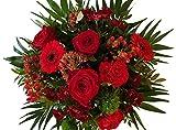 'Pure Leidenschaft' | der Blumenstrauß für die LIEBE | mit Großblütigen XXL...
