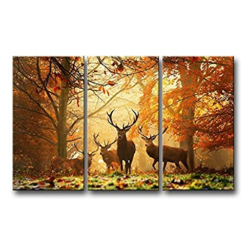 3 Piece Brown Wall Art Picture Deer In Autumn Forest