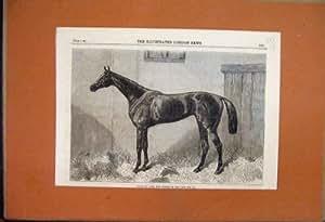 Vincitore 1864 di Fille De L'Air Racehorse la Stampa delle Querce