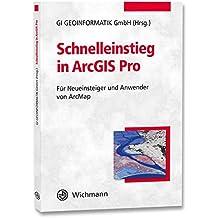 Schnelleinstieg in ArcGIS Pro: Für Neueinsteiger und Anwender von ArcMap