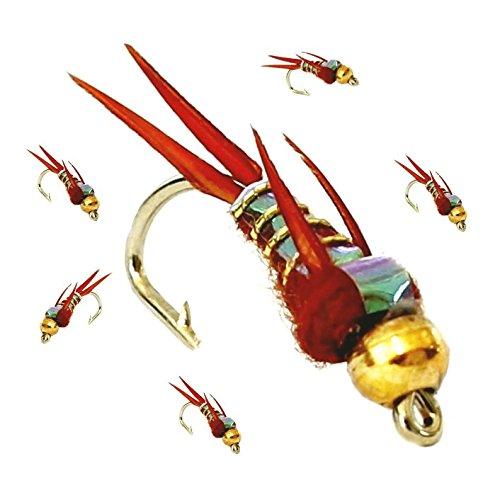 ARC Fishing Flies Angelfliegen für Forellenangeln, Goldkopf, 33 J x 6 x braune Wochen, Haken, Größe 14, 6 Stück