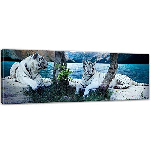 Bilderdepot24 Kunstdruck - Tiger II - Bild auf -