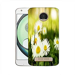 Snoogg camomile on a fiel Designer Protective Back Case Cover For Motorola Moto Z Play