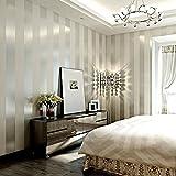LXPAGTZ Einfache moderne Vlies-Tapete Schlafzimmer Wohnzimmer schwarzen und weißen vertikalen Streifen blau Östliches Mittelmeer Wand Tapete lange 9.5 m * Breite 0,53 m (5 m ²) , 11083 white silver