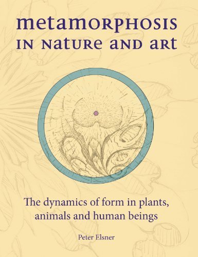 Metamorphosis in Nature and Art: The Dynamics of Form in Plants, Animals and Human Beings (Art & Science) by Elsner, Peter (2013) Hardcover