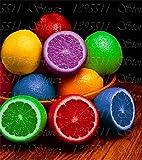 20 PC-seltene Regenbogen Lemon Samen Bio-Frucht Lemon Tree Samen Home Garten Obst Pflanzen Bunte Bonsai Zitrone Samen Mischung gegessen werden