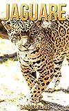 Kinderbuch: Erstaunliche Fakten & Bilder über Jaguare