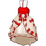 SABA GARMENTS Girl's Party Wear Layered ...