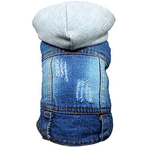 DC. Pet Hund Jean Jacke Haustier Kleidung Hund Denim Jacke Shirt Hund Cool Blue Weste Coat Hoodie für Kleine Hunde Mittelgroße Hunde, XS, Grey - Jean Grey Summers Kostüm