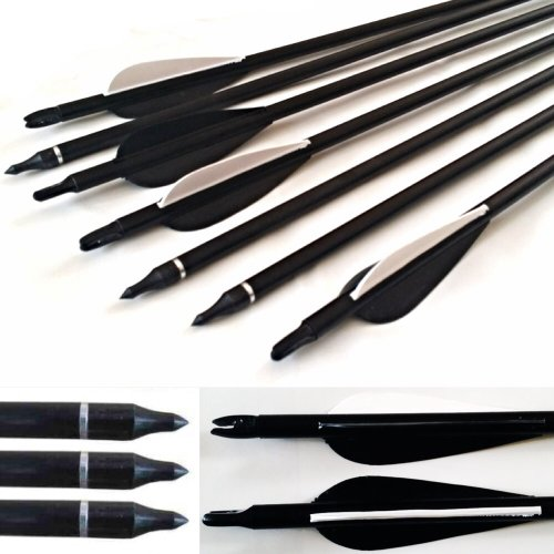 10 Fibreglass Arrows Field Tips Archery Hunting BroadHead compatible Compound & recurve Bow Test