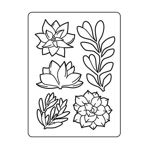 Darice Embossing Folder Prägefolder-Schablone, Pflanzung Blumen-Cacti-10,8 x 14,6 cm, Plastic, transparent, 10.8 x 14.6 x 0.11 cm -