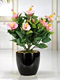 Fourwalls 31 cm tall Artificial Hibiscus flowers fixed in a glazed ceramic pot (Pink)