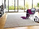 Schöner Wohnen Teppiche: Moderner Designer Teppich Juniper Beige 90x160 cm - schadstofffrei - 100% Schurwolle - Berber - Handgewebt - Wohnzimmer
