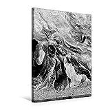Premium Textil-Leinwand 50 cm x 75 cm hoch, Ein Motiv aus dem Kalender Bleistiftzeichnungen | Wandbild, Bild auf Keilrahmen, Fertigbild auf echter Leinwand, Leinwanddruck (CALVENDO Kunst)