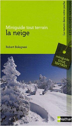 La neige por Robert Bolognesi