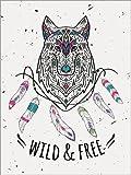 Posterlounge Acrylglasbild 90 x 120 cm: Wild von Kidz Collection/Editors Choice - Wandbild, Acryl Glasbild, Druck auf Acryl Glas Bild