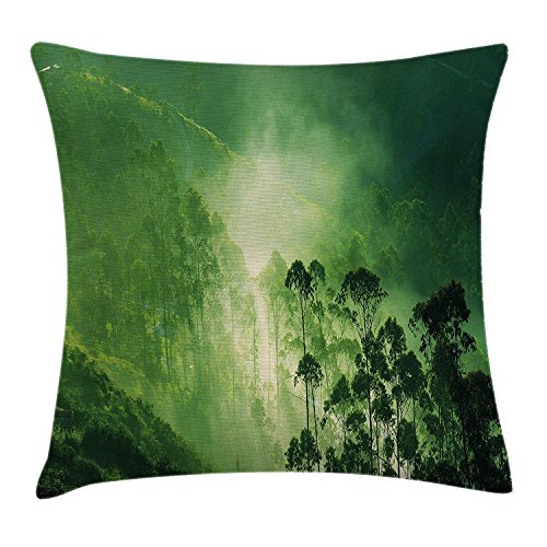 Landscape Decor Pillow case Hazy Fall Fog Vibrant Timberland on Mystic Eco Sierra Nevada Art Photo Throw Pillow Covers 20x20 Inches ()