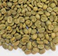 Redber Costa Rica Amapola Tarrazu, Green Coffee Beans by Redber