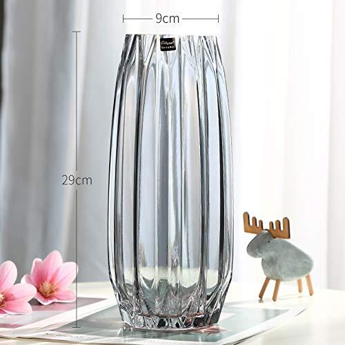 beidexiaowu Kreative Große Glasflasche Transparente Farbe Hydroponik Reiche Bambus Lilie Rose Vertikale Kante Vase Wohnzimmer Blumendekoration (Brilliant) ruß-hoch Große Russ Vase