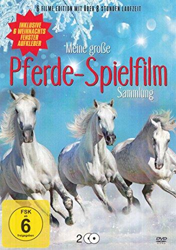 Die Pferde Spielfilm Sammlung (Das Zauberpony-Das letzte Einhorn kehrt zurück-Kleine Helden, große Wildnis-Das vergessene Pferd-Mein liebstes Fohlen-Zwei treue Gefährten) 2DVD