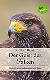 Der Geist des Falken: Berichte einer schamanischen Reise