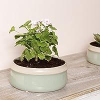 Dibor - Ceramic Sage Green Round Bowl Flower Pot Planter