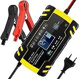 Chargeur de Batterie, BUDDYGO 12V 8Amp/24V 4Amp Booster Voiture Mainteneur...