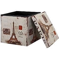 "[en.casa] Faltbarer Sitzhocker (38 x 38 x 38 cm) zugleich Aufbewahrungsbox - Motiv ""Paris"""