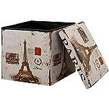 [en.casa] Taburete de almacenamiento multifunción (38×38cm) Puff - Otomana - reposapiés (PARIS) - cuero sintético PU (estampado)