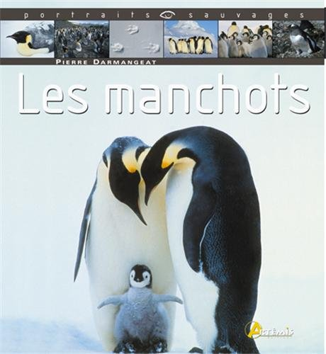 Les manchots par Pierre Darmangeat